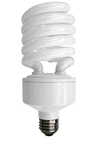 TCP 68942ED CFL Spring A Lamp - 150 Watt Equivalent only 42W used Soft White 2700k Spiral Light Bulb - Medium E26 Base