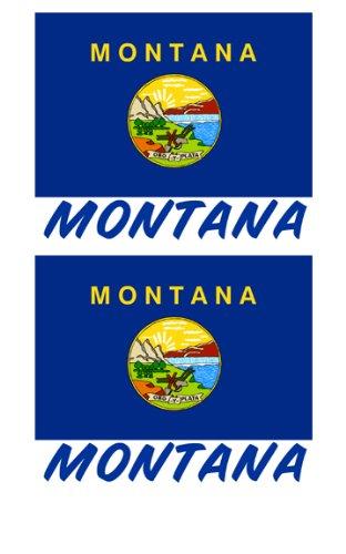 2 Souvenir Montana State Flag Stickers Decal Laptop Phone Locker Toolbox Wall Stocking Stuffer